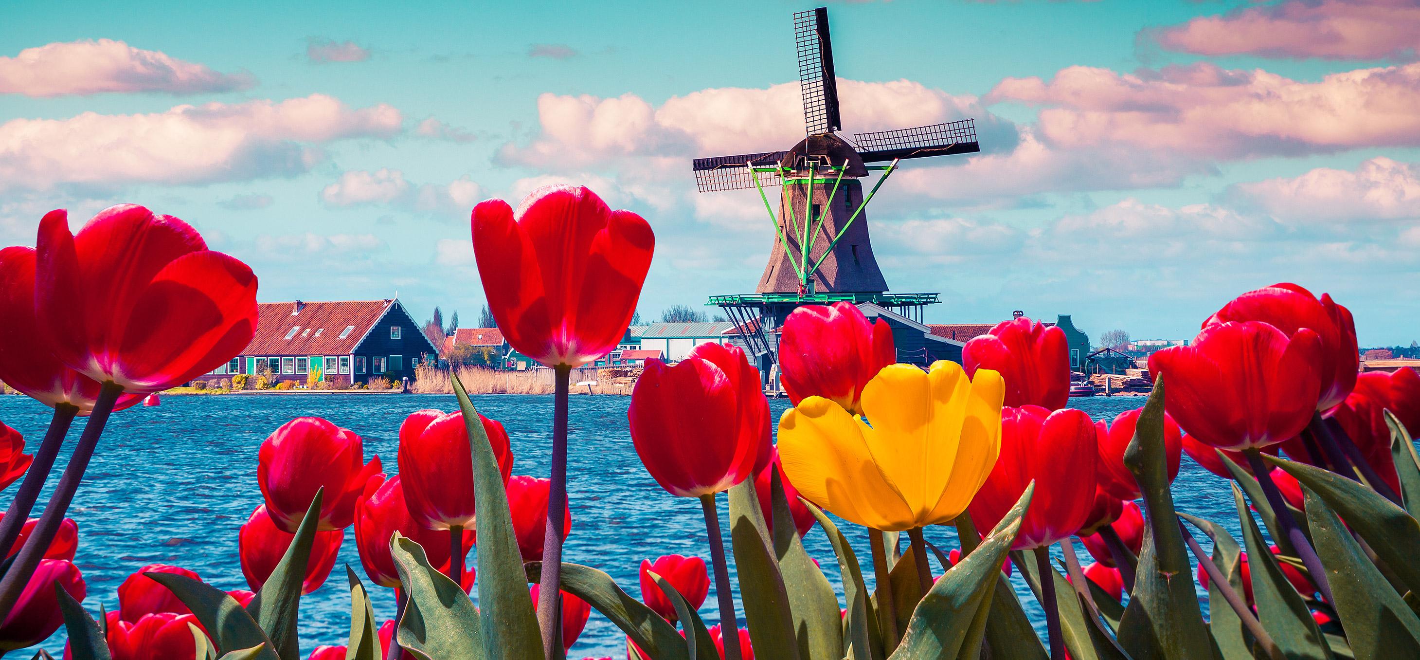 Onderzoek: Wat Nederland Nederland maakt volgens Nederlanders